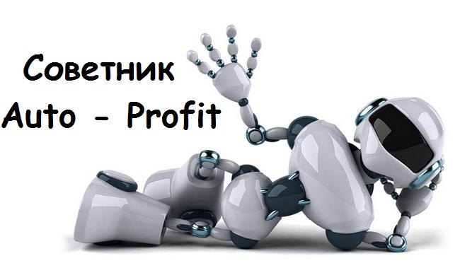 auto-profit1